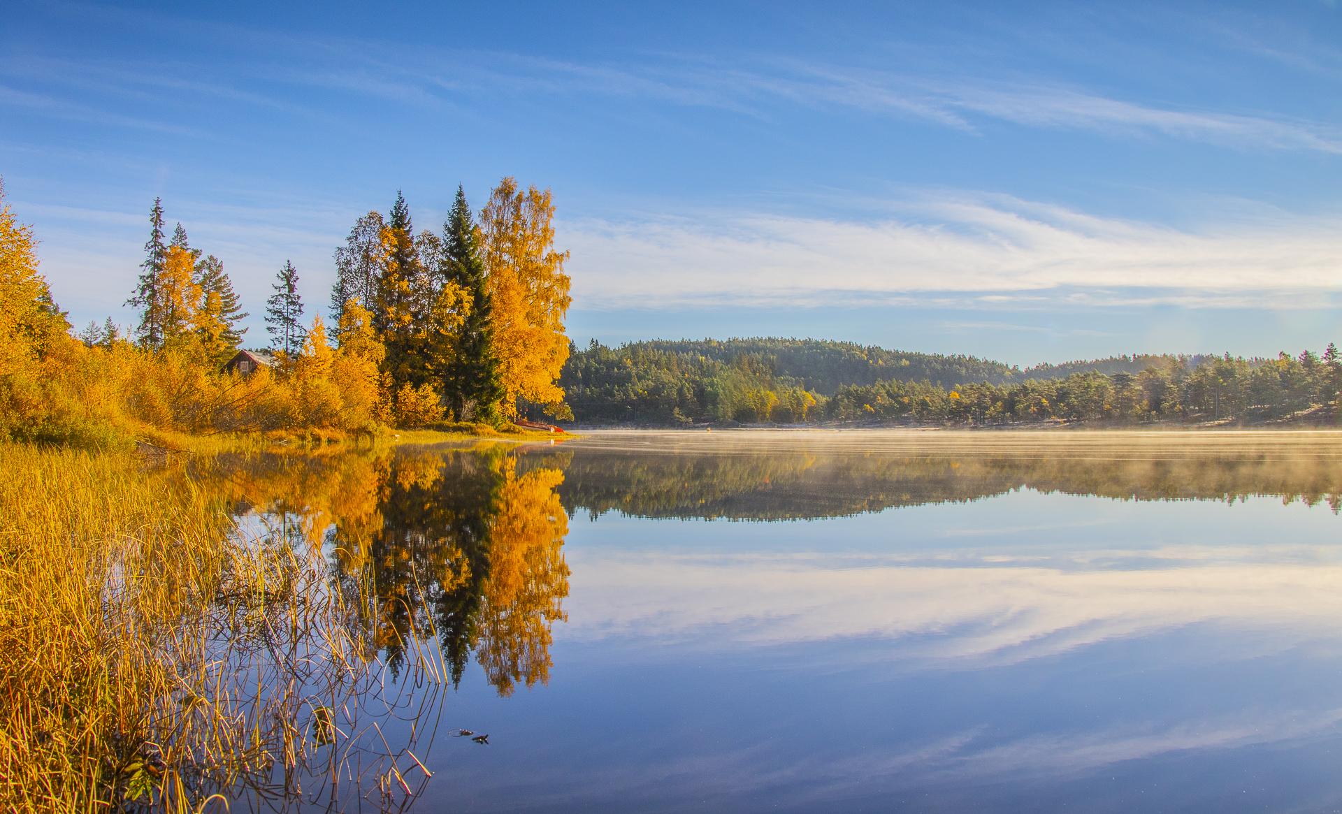 Månedens foto i oktober: Høst.